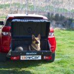TowBox Dog V1 Black abierto con perro 01