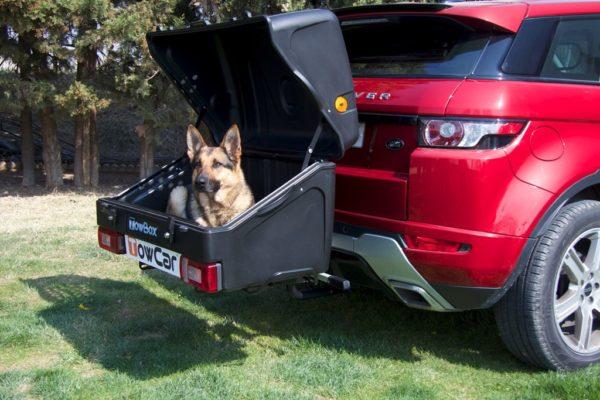 TowBox Dog V1 Black abierto con perro 02