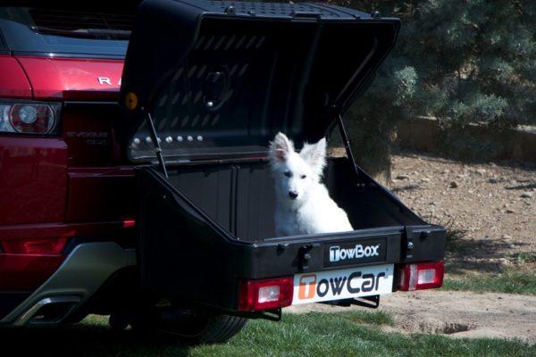 TowBox Dog V1 Black abierto con perro pequeño