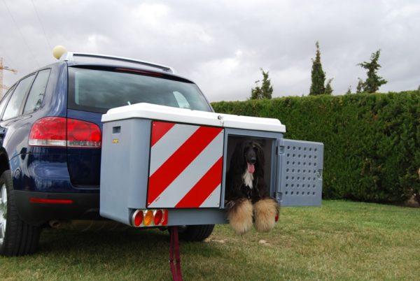 Dog carrier con 1 perro