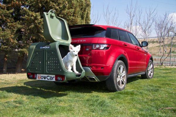 Portaperros TowBox Dog V2 Verde con perro pequeño