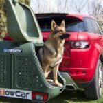 Portaperros TowBox Dog V2 Verde con perro