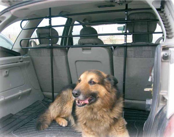 Separador Carga/Perros Dogui 2 montado en coche